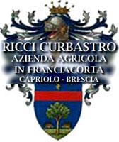 Ricci Curbastro