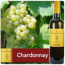 Chardonnay Sicilia DOC 2012